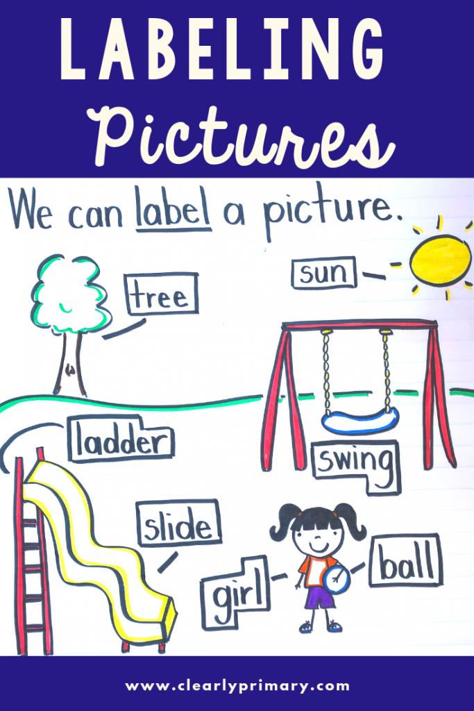 Labeling Pictures in Kindergarten & Beyond